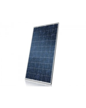 CS6P-255P - Centrium Energy - Painél solar Canadian 255W